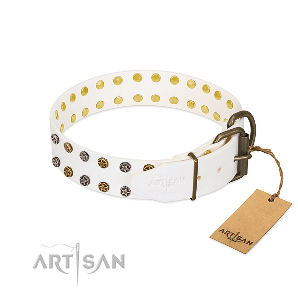 Full grain leather collar with fashionable adornments for your pet