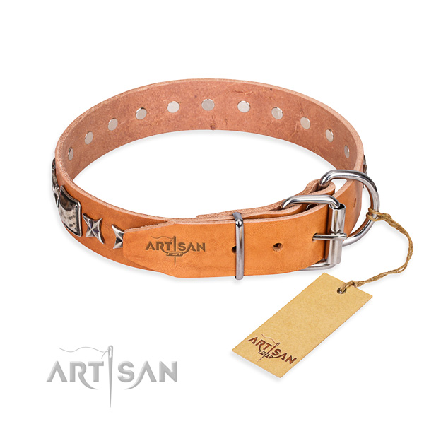Top quality adorned dog collar of full grain leather