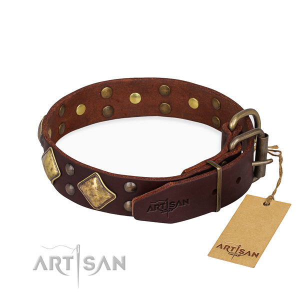Natural leather dog collar with trendy durable decorations