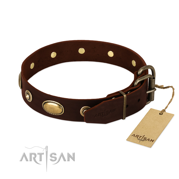 Corrosion proof fittings on natural leather dog collar for your four-legged friend