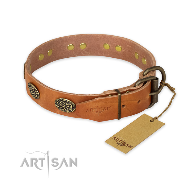 Reliable traditional buckle on natural genuine leather collar for daily walking your dog
