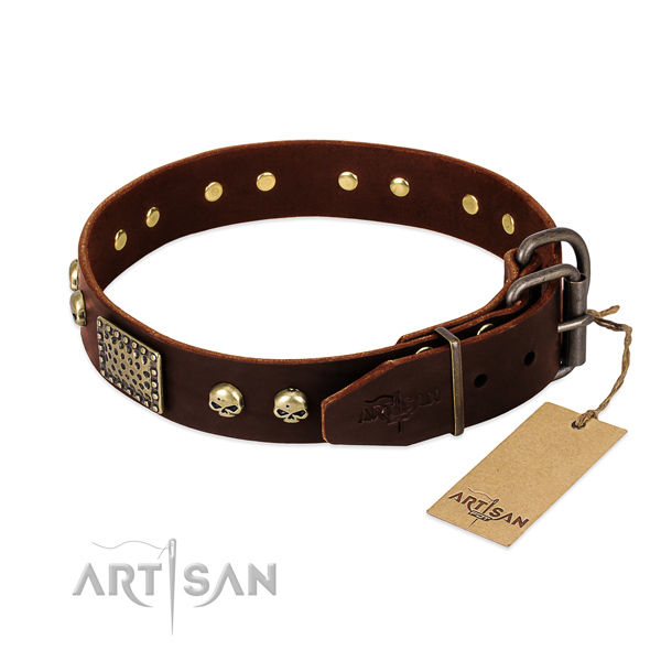 Corrosion resistant fittings on everyday use dog collar