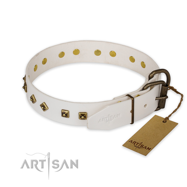 Durable traditional buckle on genuine leather collar for everyday walking your pet