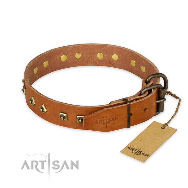 Corrosion resistant fittings on leather collar for basic training your doggie