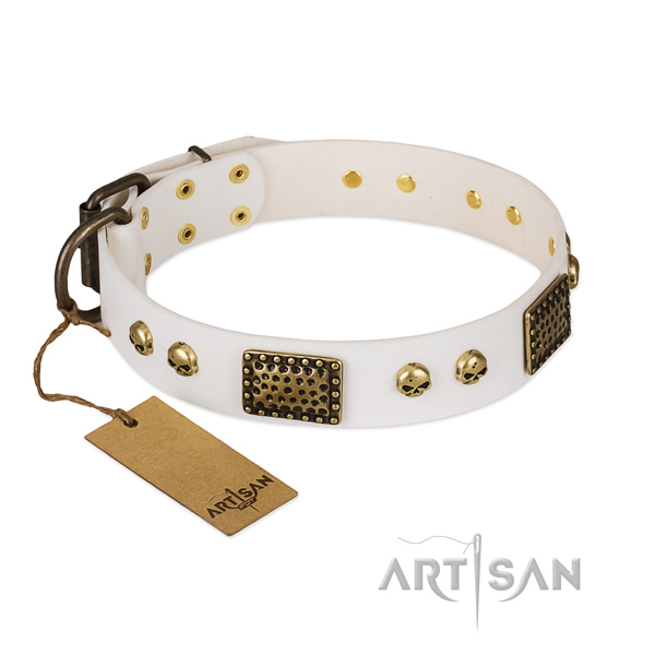 Rust-proof traditional buckle on walking dog collar