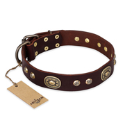 """Breath of Elegance"" FDT Artisan Decorated with Plates Brown Leather American Bulldog Collar"