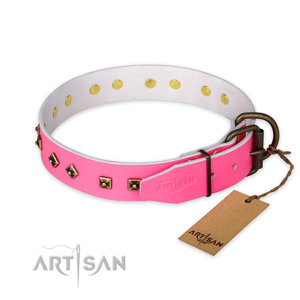 Corrosion proof traditional buckle on full grain genuine leather collar for daily walking your dog