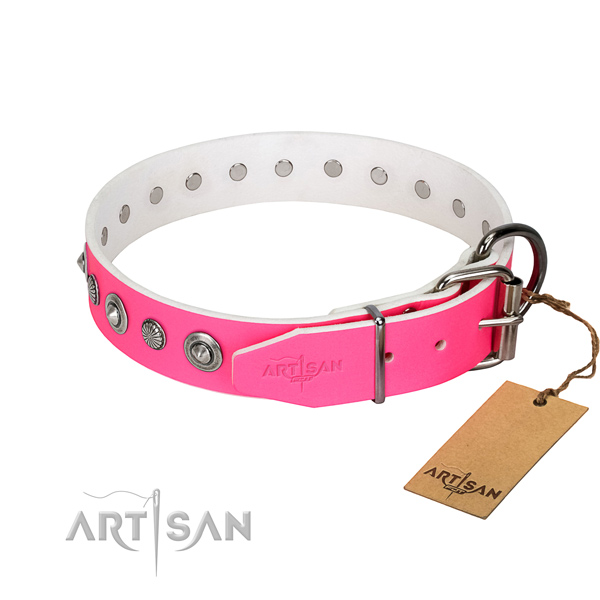 Strong full grain natural leather dog collar with unusual adornments
