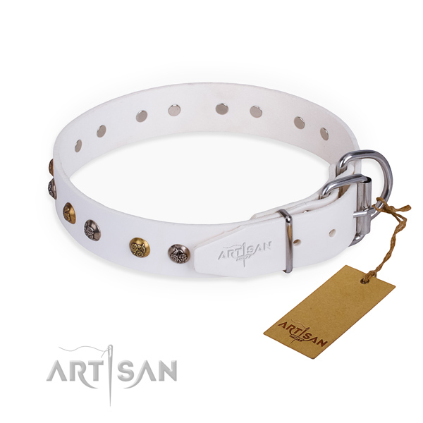 Genuine leather dog collar with unique corrosion resistant adornments