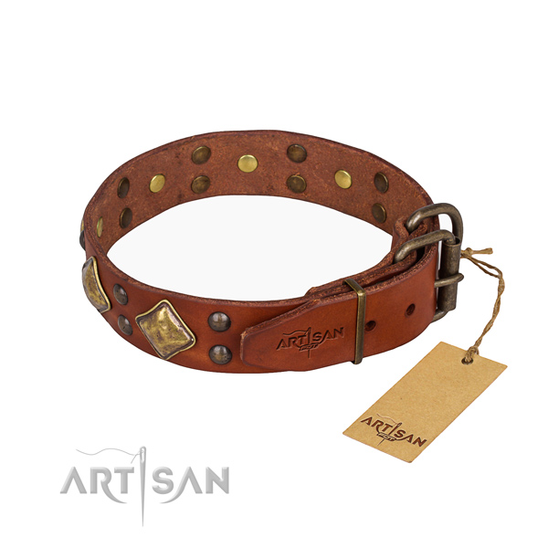 Full grain genuine leather dog collar with remarkable corrosion proof studs