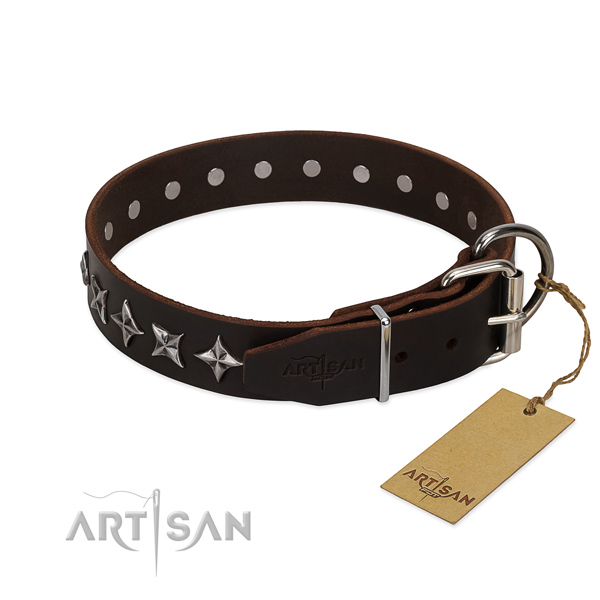 Basic training adorned dog collar of finest quality full grain leather