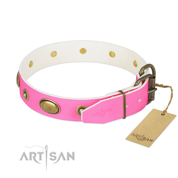 Corrosion resistant adornments on natural leather dog collar for your pet