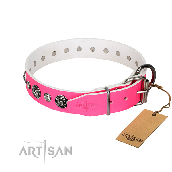 Top rate natural leather dog collar with rust resistant hardware