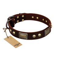 """Magic Amulet"" Brown Leather American Bulldog Collar with Skulls and Plates"