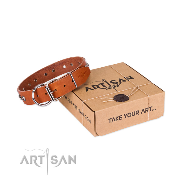 Rust-proof traditional buckle on dog collar for stylish walking