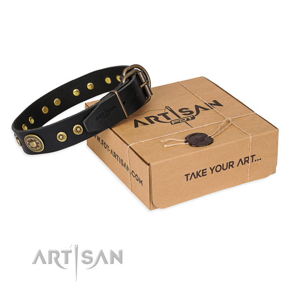Natural genuine leather dog collar made of soft to touch material with reliable traditional buckle