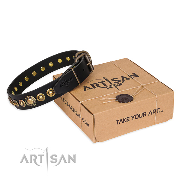 Gentle to touch leather dog collar made for basic training