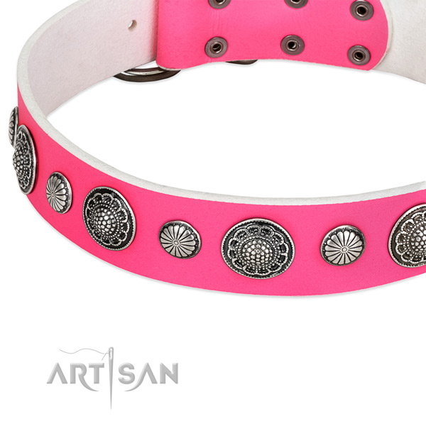 Natural leather collar with reliable hardware for your beautiful canine