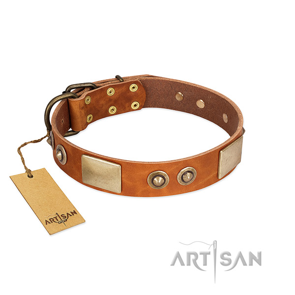 Easy wearing natural genuine leather dog collar for stylish walking your dog