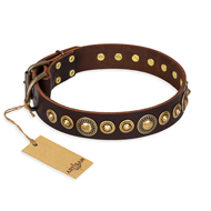 """Ancient Warrior"" FDT Artisan Fancy Leather American Bulldog Collar with Old-Bronze Plated Decorations"