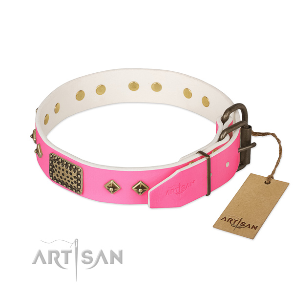 Strong studs on walking dog collar