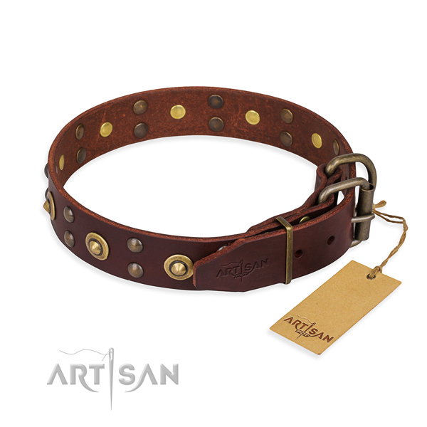 Reliable buckle on genuine leather collar for your stylish four-legged friend