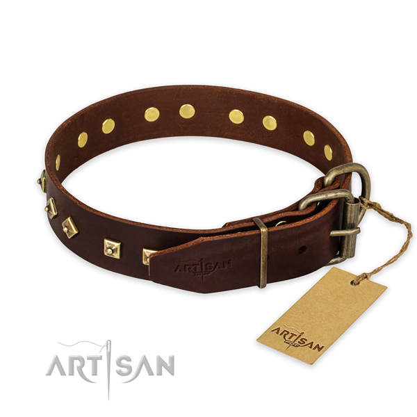 Durable fittings on genuine leather collar for daily walking your canine