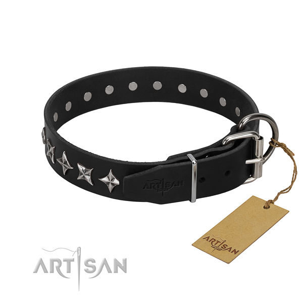 Comfy wearing adorned dog collar of strong full grain natural leather