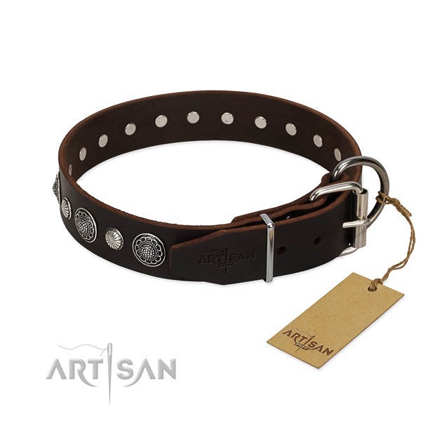 Finest quality full grain leather dog collar with stunning adornments