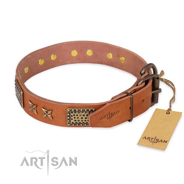 Rust-proof traditional buckle on natural genuine leather collar for your impressive pet