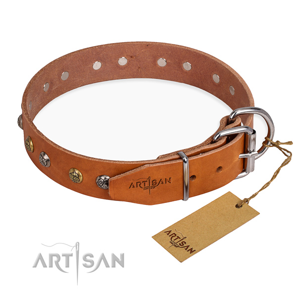 Full grain genuine leather dog collar with fashionable corrosion proof embellishments