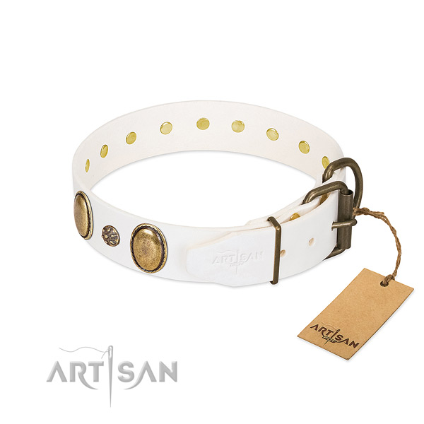 Everyday walking top rate full grain genuine leather dog collar with decorations