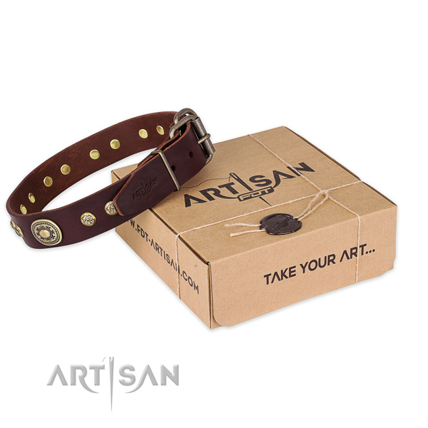 Corrosion resistant fittings on natural leather dog collar for walking