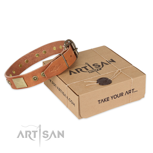 Strong traditional buckle on natural genuine leather dog collar for daily use