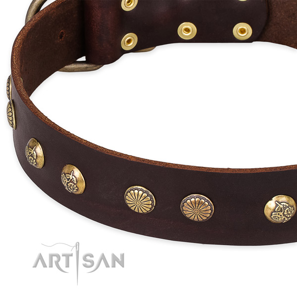 Natural genuine leather collar with corrosion resistant hardware for your lovely doggie