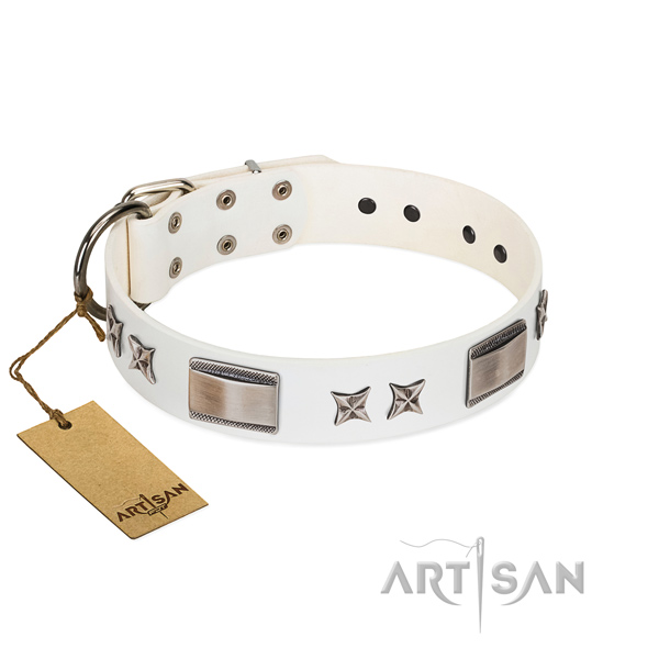Top quality dog collar of full grain leather