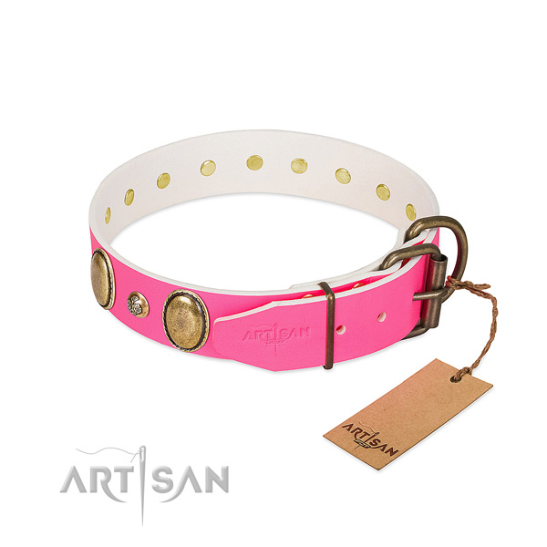Stylish walking best quality leather dog collar