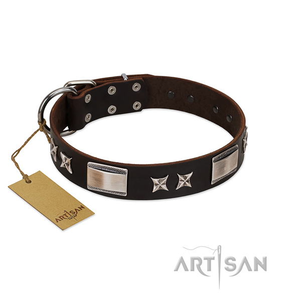 Exceptional dog collar of natural leather