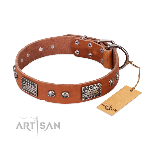 Easy wearing full grain genuine leather dog collar for stylish walking your doggie