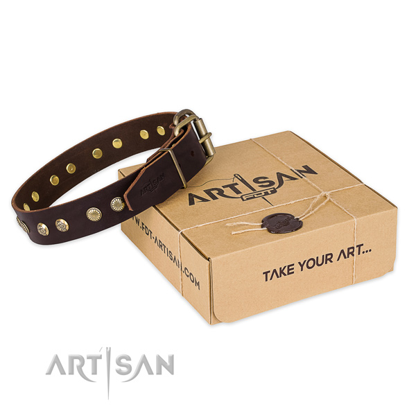 Corrosion proof fittings on genuine leather collar for your handsome canine