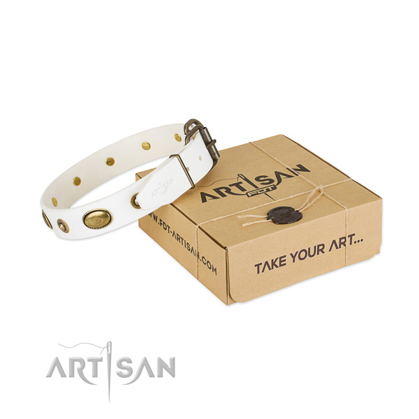 Significant full grain natural leather collar for your beautiful canine