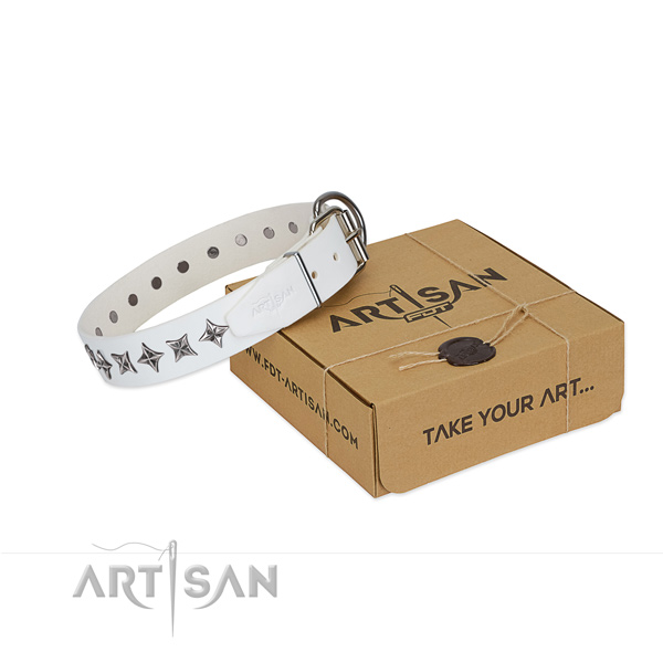 Reliable full grain leather dog collar with extraordinary studs