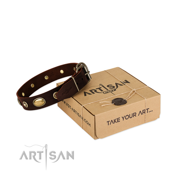 Corrosion proof studs on natural leather dog collar for your canine