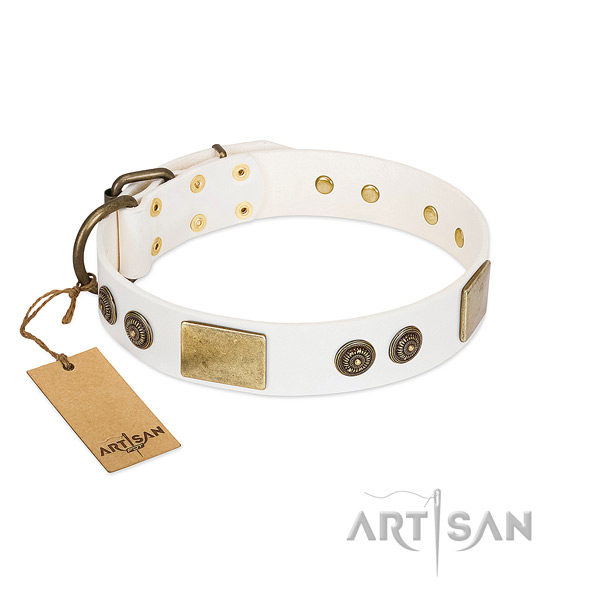 Embellished genuine leather dog collar for everyday use