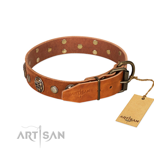 Strong traditional buckle on full grain natural leather collar for daily walking your doggie