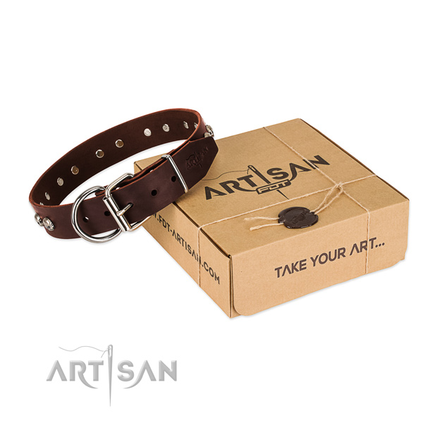 Rust-proof buckle on dog collar for everyday use