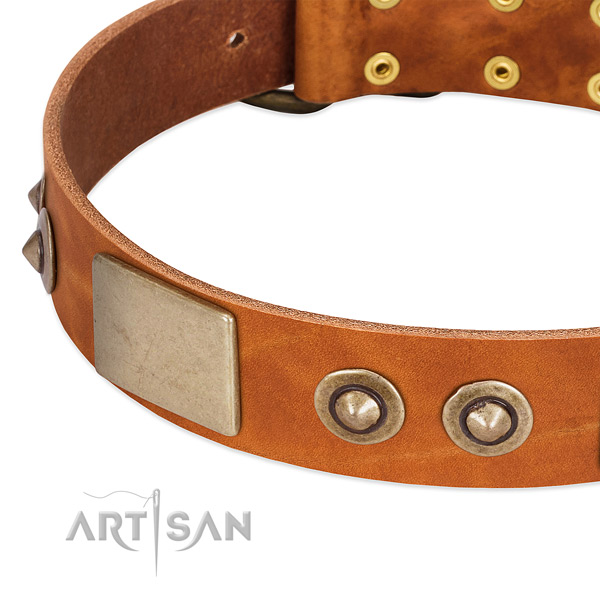 Rust resistant studs on natural genuine leather dog collar for your canine