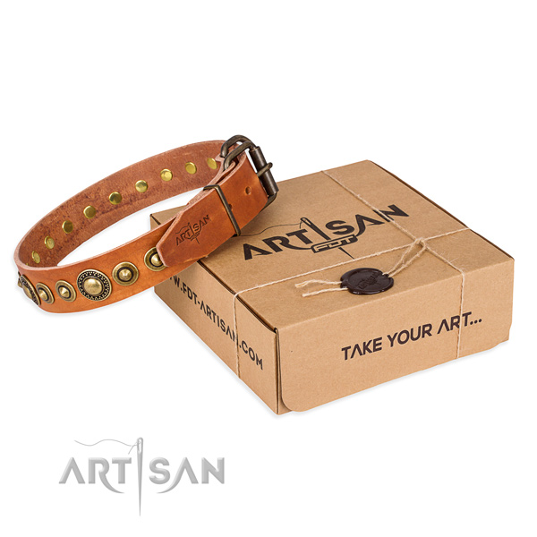 Reliable genuine leather dog collar created for stylish walking