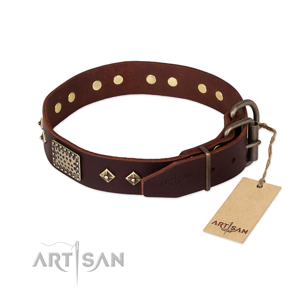 Full grain natural leather dog collar with strong buckle and embellishments