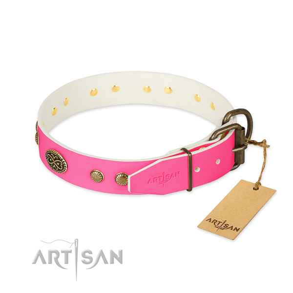 Rust resistant decorations on natural leather dog collar for your four-legged friend
